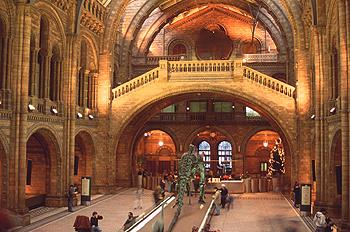 Interior de la sala principal del Museo Nacional de Historia Nat