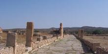 Calle, Ruinas romanas de Sbeitla, Túnez