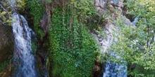 Cascada en Navalafuente