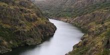 Arribes del Duero desde Puente Pino