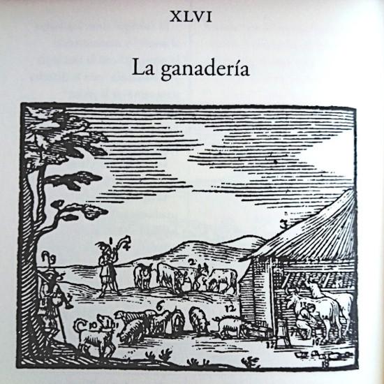 Orbis Pictus XLVI Ganadería