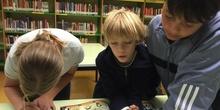 2019_Quinto B visita la biblioteca municipal_CEIP FDLR_Las Rozas 2