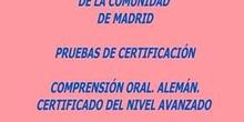 Certificado de Nivel Avanzado (B2)  Alemán. Modelo A