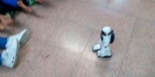 #cervanbot III: Actividades diversas (grabado por alumnos)