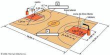Campo de baloncesto. ejercicio