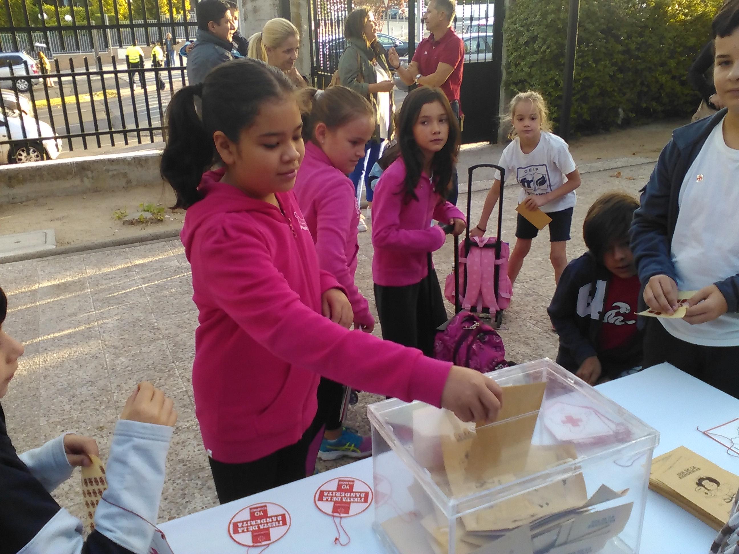 Dia de la banderita de la Cruz Roja (5)