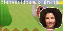 INFANTIL - 3 AÑOS A - SALIDA A LA GRANJA - ACTIVIDAD