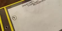 Solución problema 9 fracciones