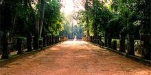 Avenida de tierra batida y estatuas, Angkor, Camboya