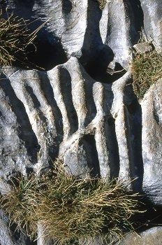 Formaciones de calizas