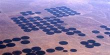Sistemas de riego en el desierto de Arabia Saudí