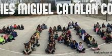 Jornadas Solidarias 1ESO 2016