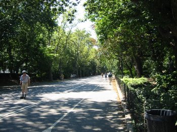 Patinando en Central Park