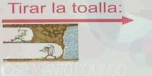 2ESO - Refranes y frases hechas -  Carlota García Gutierrez