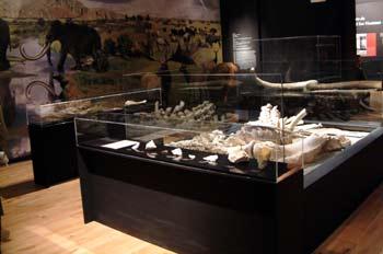 Museo Arqueológico, Alcalá de Henares, Comunidad de Madrid