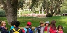 VISITAMOS EL ZOO. Educación Infantil 5 años