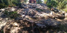 Excursión bosque encantado 12