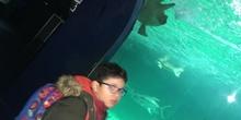 Excursión al zoo 5 años, 1º y 2º Luis Bello 30