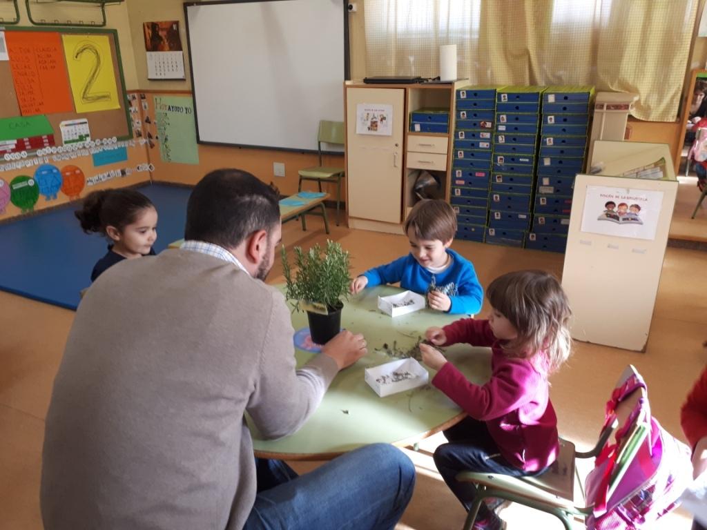 TALLER DE PLANTAS - 3 AÑOS INFANTIL 8