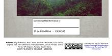 """3º PRIMARIA - """"LAS PLANTAS"""""""