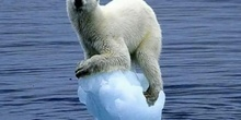 "Algo que decir 9: ""Cambio climático"""