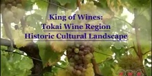 The King of Wines: The Tokai Wine Region Historic Cultural Landscape: UNESCO Culture Sector