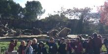 Excursión al zoo 5 años, 1º y 2º Luis Bello 25