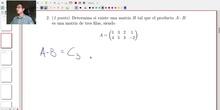 Matrices y Determinantes - Examen C Ejercicio 2