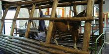 Tren interior de tracción animal, Museo de la Minería y de la In