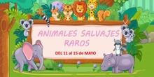 Fichas 5 - Infantil 5 años