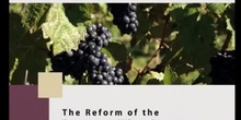 The reform of the European Wine Sector