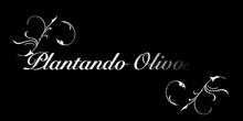 HUERTO.PLANTANDO OLIVOS