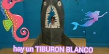Tiburones Reto