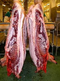 Sección del cerdo