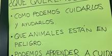 Proyecto animales en extinción 8