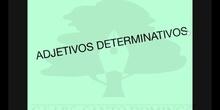 PRIMARIA 5ºLENGUA CASTELLANA Y LITERATURA ADJETIVOS DETERMINATIVOS