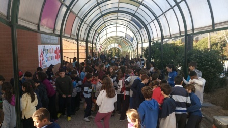 2018_01_30_MERCADILLO DIA DE LA PAZ 10