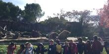 Excursión al zoo 5 años, 1º y 2º Luis Bello 26