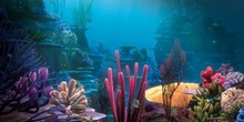 Los misterios de las algas