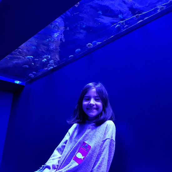 Fotos Aquarium Xanadú 3ºB 26