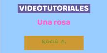Videotutorial Rocío A.