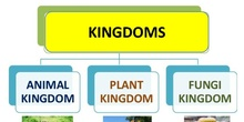 1. KINGDOMS_NATURAL SCIENCE_YEAR 4