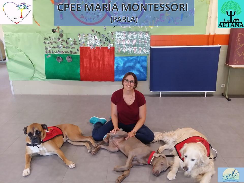 Intervención educativa asistida con perros CPEE María Montessori