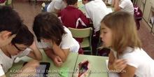Primaria_2ºEP A_Día de la ciencia_Naturales_Actividades