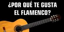 DÍA DEL FLAMENCO 2020 CEIP GLORIA FUERTES