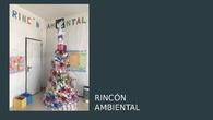 Rincón ambiental