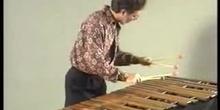 La percusión: Láminas