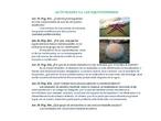 A.9.3.Actividades de los equinodermos