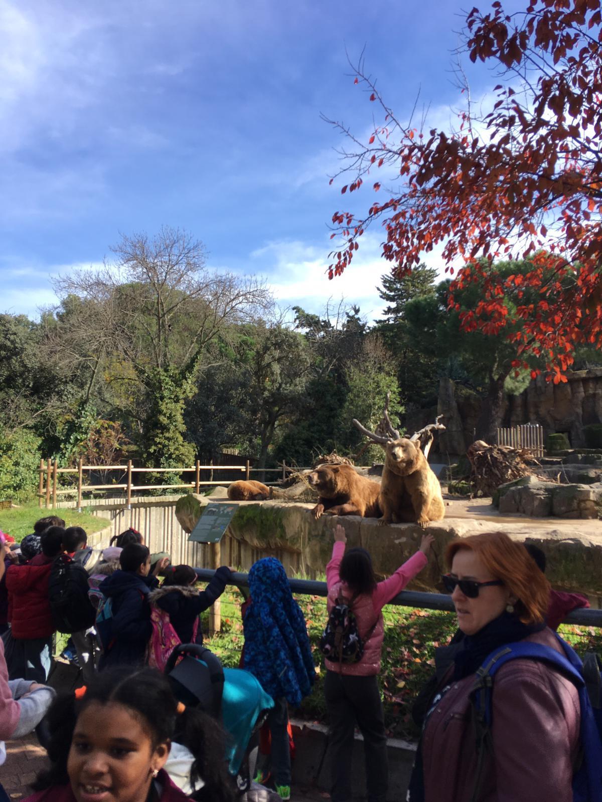 Excursión al zoo 5 años, 1º y 2º Luis Bello 20