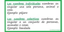 Nombres individuales y colectivos